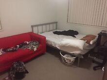 Room for rent Home/Share/Flat Northgate Brisbane North East Preview