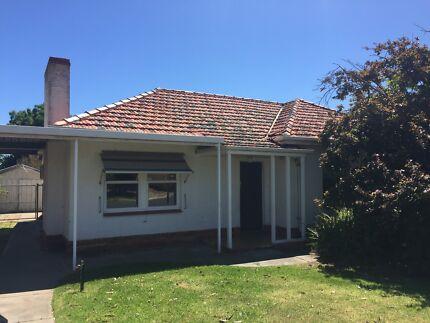 3 bedroom house in Lockleys