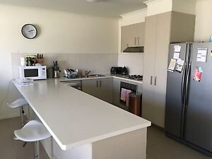 Room for Rent - WANTING HOUSEMATE Somerville Mornington Peninsula Preview
