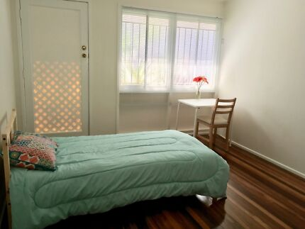 Holiday Single room to rent.Coorparoo.