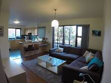 Furnished1 bedroom private apartment in Dee Why Dee Why Manly Area Preview