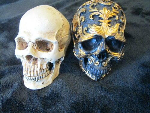 2 skulls