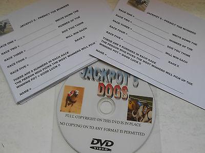 JACKPOT 5 DOG RACING DVD = NEW IDEA FOR RACE NIGHTS GREAT FUN / FUNDRAISER