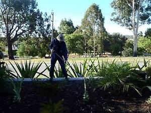 The Gardener Dianella Stirling Area Preview