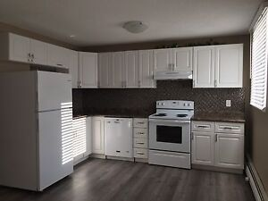 Renovated one bedroom available immediately east side