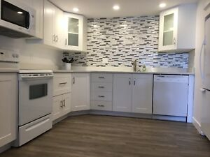 Beautiful & Bright One Bedroom Suite for Rent