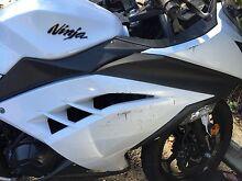 2014 Kawasaki Ninja 300cc abs $4500 Lewisham Marrickville Area Preview