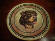 Rottweiler - Collectors Plate Nedlands Nedlands Area Preview