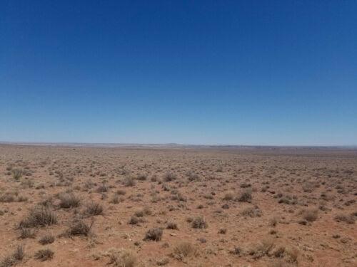1.25 acre lot in Adamana, AZ (Navajo County) - Cash or finance