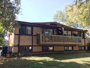 Budget friendly 3 BED home with 2 weeks FREE RENT! ONLY $895
