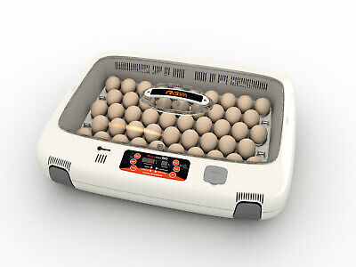 Rcom Mx50 Egg Incubator Hatcher Automatic New Us 110v Max 50