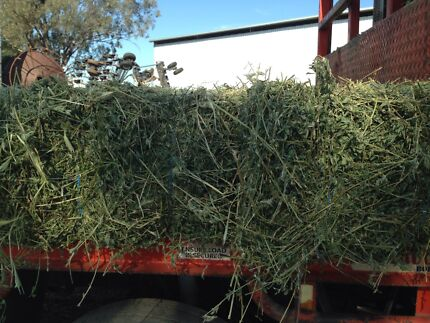 Hay for sale Myall Creek Gwydir Area Preview