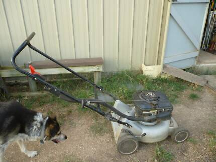 Masport 4 Stroke Mulcher Lawn Mower B & S 50 Engine