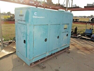 Onan Quiet Site Ii Ggkd-4482901 Natural Gas Generator Wnew Transfer Switch