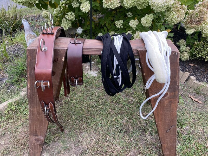 Leaders Training System For Horse, Training Surcingle, Lines And Training Aid