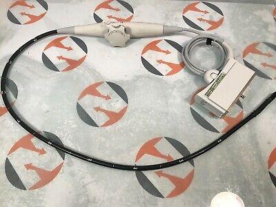 Siemens Acuson Tee Probe Te-v5ms 08264577