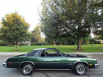 1976 oldsmobile cutlass ebay for 77 cutlass salon for sale