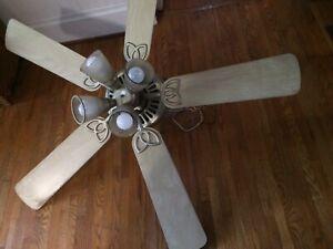 Large 5 blade fan