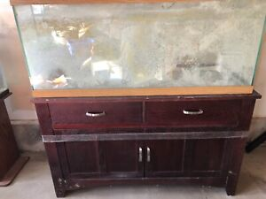 Fish aquariums & accessories