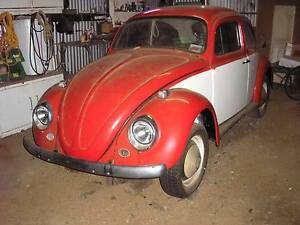 1967 Volkswagen Beetle Coupe Katanning Pallinup Area Preview