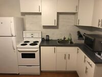 Clean bright one bedroom apartment for rent