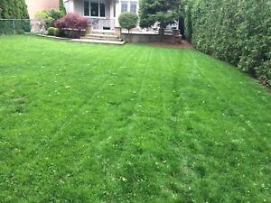 Lawn Mowing and Spring Cleanups FREE ESTIMATES