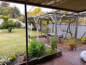 House to rent Mount Hawthorn Vincent Area Preview