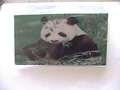 Panda Bear Checkbook cover - Panda Checkbook Cover