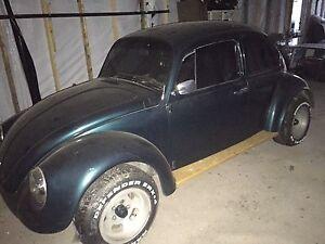 Beetle 1976