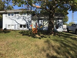 House for sale west (Milford area )