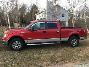2011 Ford F-150 ecoboost last chance