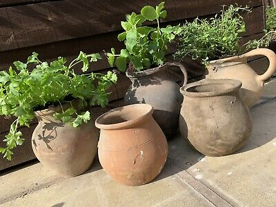 🌿 Genuine Vintage Antique European Terracotta Herb Trough Plant Pot Urn X1 🌿