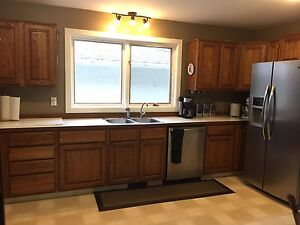 Oak Kitchen Cabinets, Countertop and Sink