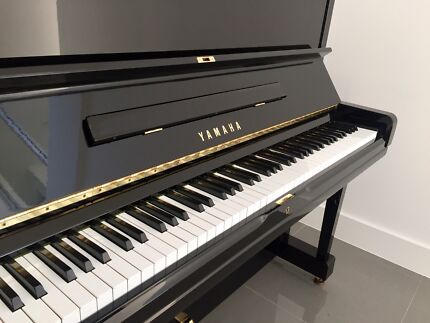 Immaculate Yamaha U3H - New Hammers, Local Piano, all books & history.