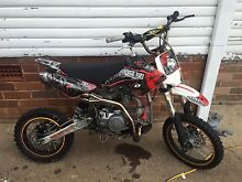 Pit bike thumpster 140cc South Penrith Penrith Area Preview