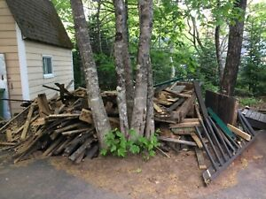 Free scrap wood (mostly decking boards)