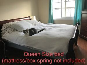 Queen Size Sleigh BedRoom Collection