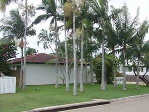 HERMIT PARK: Clean Quiet Cool Landscaped Unit Hermit Park Townsville City Preview