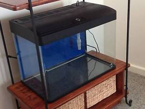 Aquarium - Reduced to sell Lathlain Victoria Park Area Preview