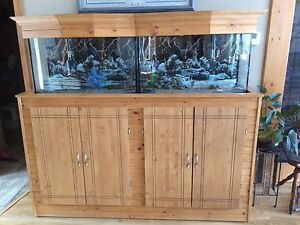 Two 55 Gallon Fish tanks (Can deliver)