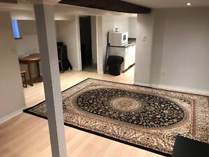 Lower level - 1 bedroom w/ laundry - Available Jan 1