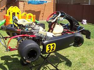 2013 X-30 leapod 125cc PCR KART Wollongong Wollongong Area Preview