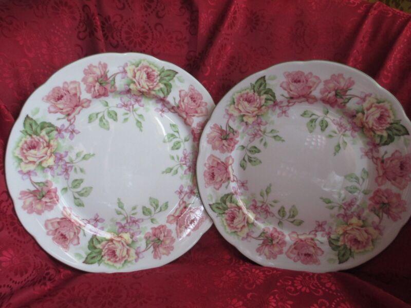 """Vintage 2 Plate Dish Bernardaud Limoges France 10 1/4"""" in Diameter"""