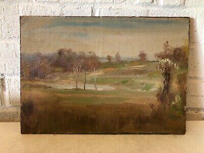 Malerei Board (Antik Öl auf dem Papier Fixiert Board Bunt Landschaft Malerei)