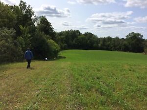 40 Acres Vacant rural property