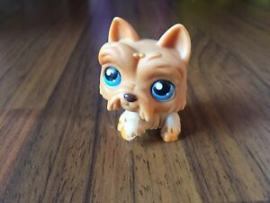 #249 VERY RARE Littlest Pet Shop Red Magnet Scottish Terrier Dog