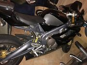 Triumph Daytona 675 2008 Greenwith Tea Tree Gully Area Preview