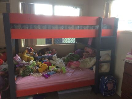 Bunk beds red and blue Kirwan Townsville Surrounds Preview