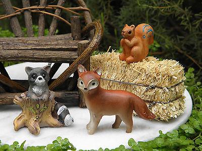 Miniature Dollhouse FAIRY GARDEN ~ Set/ 3 Woodland Animals Raccoon Squirrel Fox
