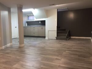 Open Concept 1 Bedroom/Bachelor Downtown